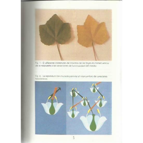 Botanica Las plantas y su adaptacion al medio