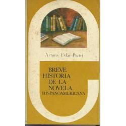 Breve historia de la novela hispanoamericana