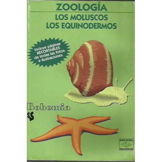Zoologia Los moluscos Los equinodermos